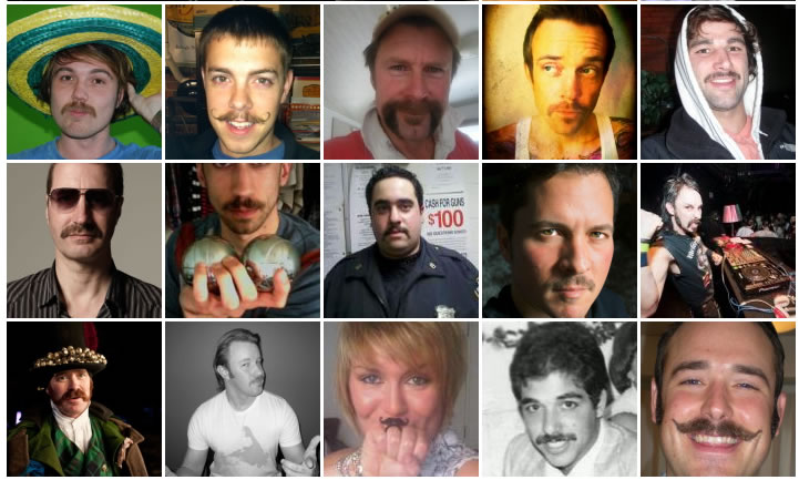 some lovely moustaches grown for Movember