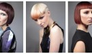 Part 1 L'Oréal Colour Trophy Regional Finalists