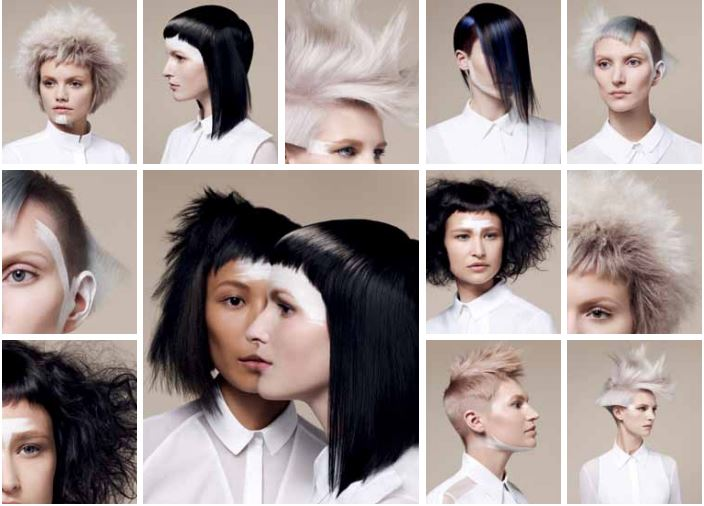BHA COLLECTION 2013